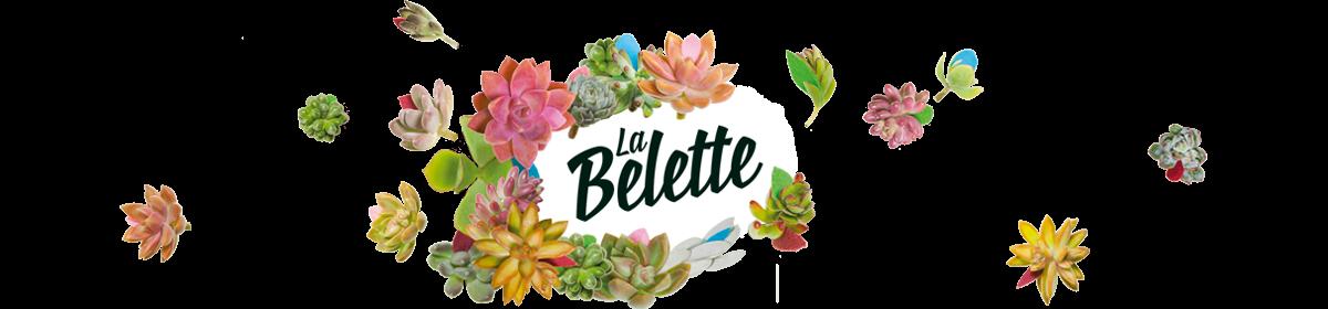 Le blog de la belette